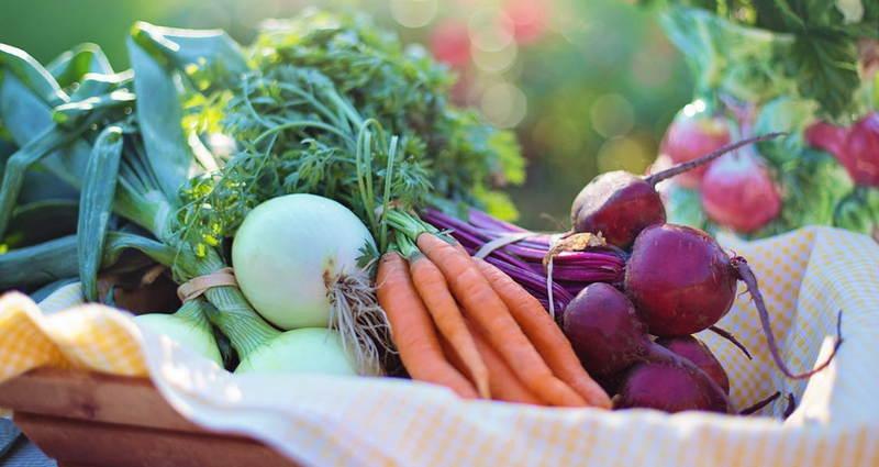 Полезная диета при запоре