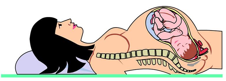положение ребенка в утробе матери на поздних сроках беременности